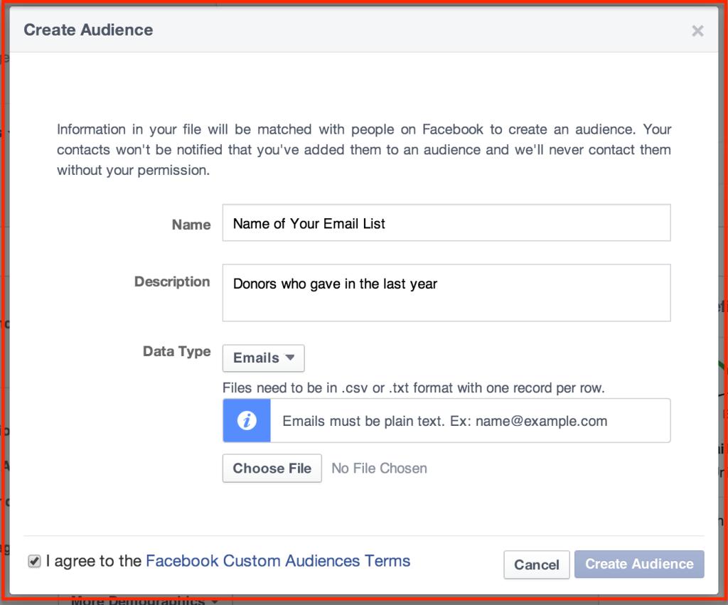 Datafile-custom-audience-1024x851